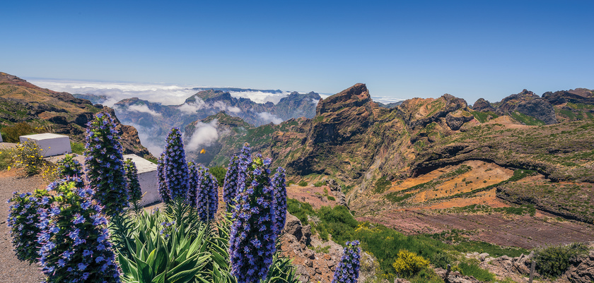 Portugal_Thumbnails_funchal-scenery.jpg